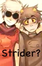 Strider? (DaveKat) by erisolshipper