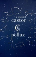 castor and his pollux (oneshot) by quiver_