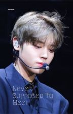 Never Supposed To Meet by Kirby_armywannable