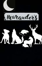 The Last Marauder by Princessofseaandsun