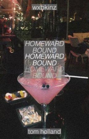Homeward Bound ✦ T. Holland by wxbkinz