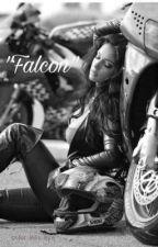 Falcon  by multifxandomstoriez