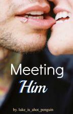 Meeting Him by luke_is_ahot_penguin