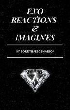 EXO Reactions & Imagines by SorryBaeScenarios