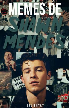 Memes de Shawn Mendes by JudithYay