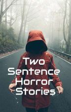 Two Sentence Horror Stories by 2manyships2sail