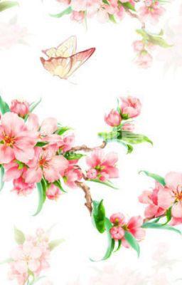 Đọc truyện Đào hoa y cựu tiếu đông phong