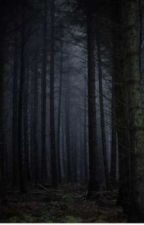 haunted forest by Feliciaheg