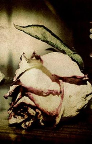Diary Of A Dead Rose