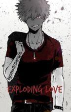 Katsuki Bakugou X Reader   Exploding Love   {BNHA} by bakuprotectionsquad
