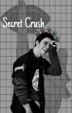 Secret crush  by dolanXboyce