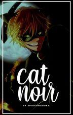 cat noir ⇢ avengers  by spiderlang