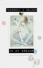 In My Dream [ Todoroki x Reader ] by SeikanoItchi