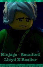 Reunited - Ninjago (Lloyd X Reader) by PandaPoodle