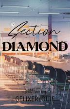 Section Diamond  by gelixerlouie