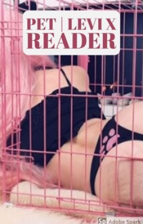 Pet | Master! Levi X Pet! Reader (18+) by BinBunnie
