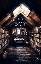 The Boy In The Attic 》h.s [Español] by chxneldope
