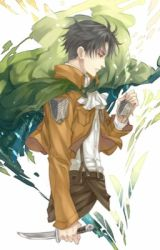 What I do for love~levi x OC fanfic by Fangless_Vampire