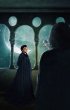 Harry Potter and the Inheritance of  Money and Creature by Snarryfan87