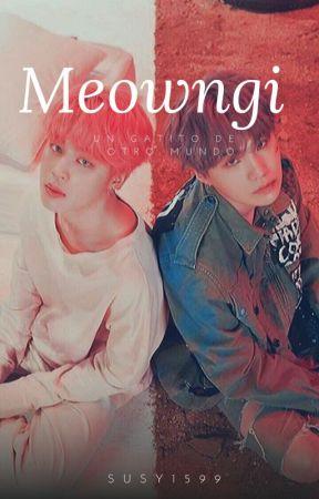 Meowngi ❁❀✿ YoonMin by susy1599