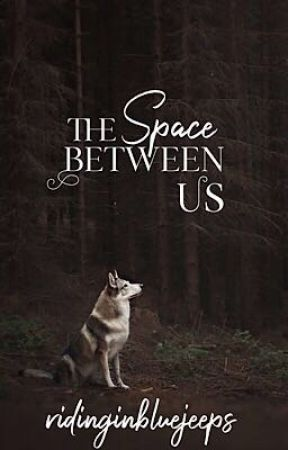 The Space Between Us (boyxboy) by ridinginbluejeeps