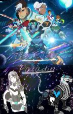 The Silver Paladin [Keith X Reader] by straytothemoon