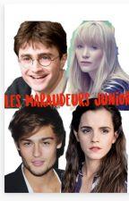 Les maraudeurs juniors by Fredoulove-granger