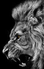 Os Leões e o Domador by MurilloCafaldo