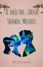 - A múltba zárva - Shawn Mendes - (16+) by ilona96x