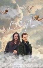 Belle Âme ~ Seth Clearwater by feyrearcheron44