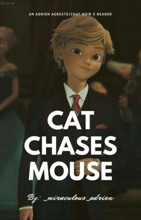 ~cat chases mouse~ adrien agreste/chat Noir x reader by _miraculous_spidey