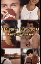 ••Shawn Mendes Imagines•• by mendes_imagines