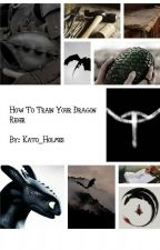 How to Train Your Dragon Rider by Kato_Holmes