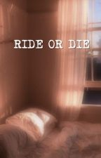 ride or die | l.mh x h.js by AussieBoiFreckles