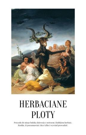 herbaciane ploty by swetereq