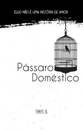 Pássaro Doméstico by Taisu22