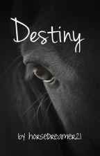 Destiny by horsedreamer21