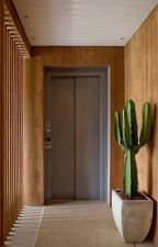 elevador • [r.l.] by astronina