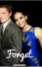 Forget: an Everlark fanfic by seriouslywrite