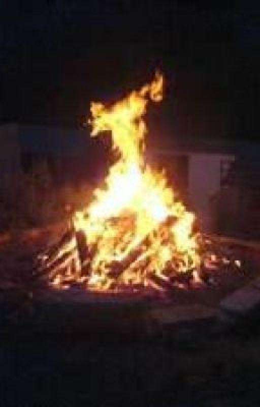 Sitting Round The Bonfire by Skyhawk33