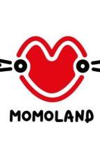 MOMOLAND - Những Ngày Đầy Nắng by RinBeCungg