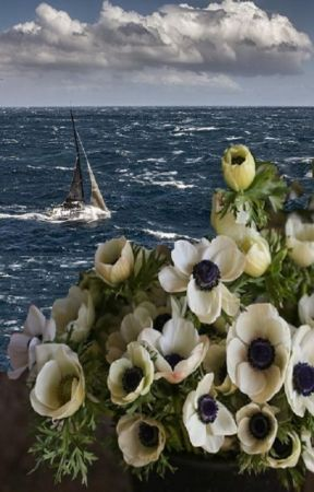 Anemones in the Wind, Pagosa Cliffs Book 4 (#wattys2019 ) by PenumbraMine
