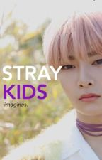 Stray Kids | Imagines  by christals__