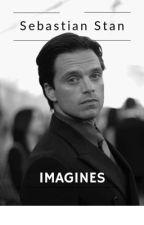 Bucky/Sebastian Stan x Reader IMAGINES by adristories26
