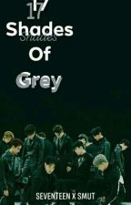 17 Shades of Grey / SEVETEEN X SMUT SHORT STORY (Editing)  by ShuaNoonie