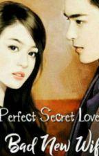 Perfect Secret Love by arinrrin