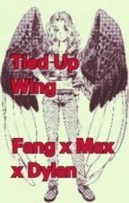 Tied Up Wing (Maximum Ride) Dylan x Max x Fang by sammy_chan101