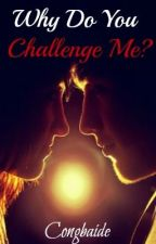 Why Do You Challenge Me? by congbaide