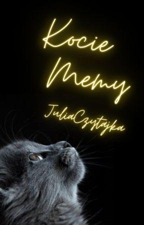 Kocie Memy. by JuliaCzytajka