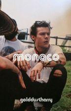 monaco // h.s au by golddustharry